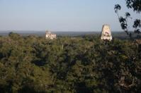 Tikal covers a very large area.